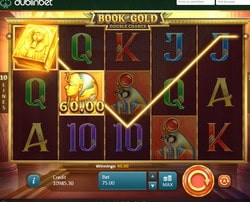 Machine à sous Book of Gold disponible sur Dublinbet