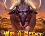 Win a Beest sur Magical Spin